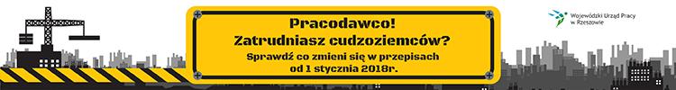 Zatrudnienie cudzoziemców w Polsce w 2018 r.