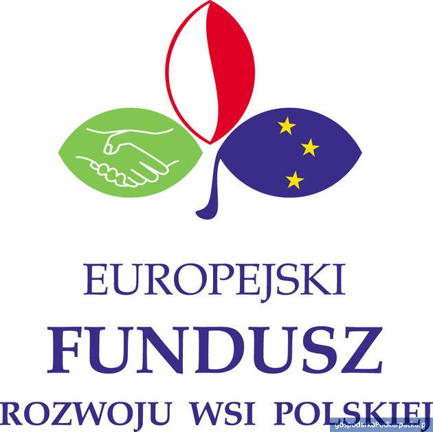 """""""Leśna Akademia Sportu Dzieci i Młodzieży"""" – pilotażowy projekt Fundacji EFRWP"""