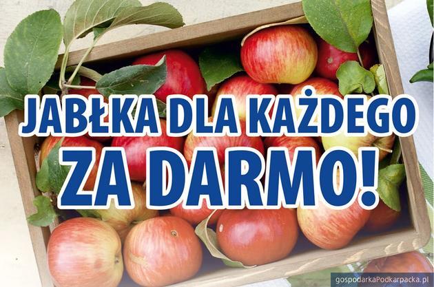 Jabłka dla każdego. Za darmo!