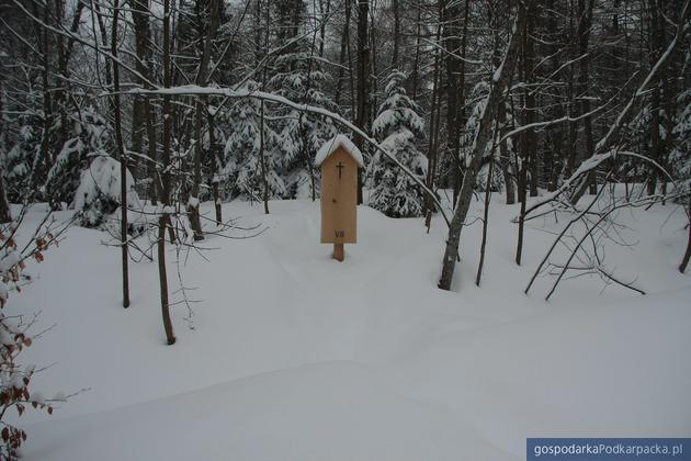 Warunki zimowe na trasie. Fot. BdPN