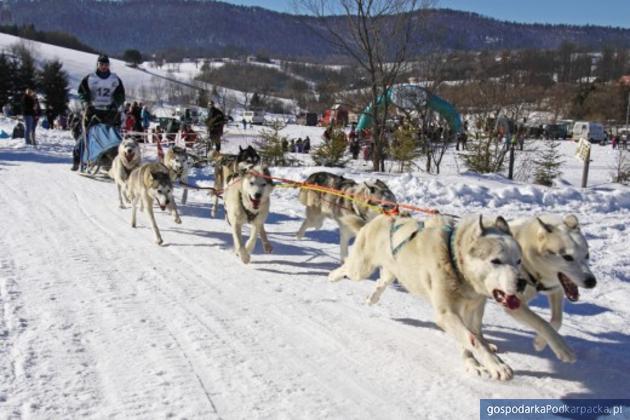 Kalendarz imprez zimowych w województwie podkarpackim