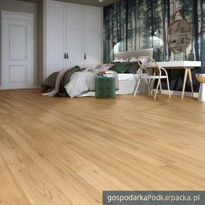 Dąb Classic w ofercie Baltic Wood