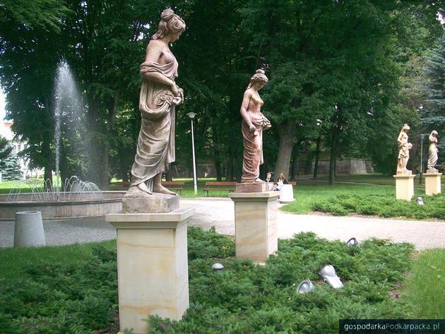 Fot. UM Rzeszow