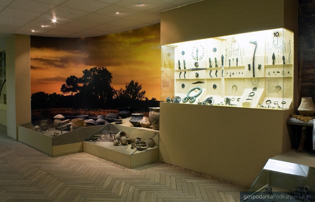 Artefakty archeologiczne. Fot. Muzeum Okręgowe w Rzeszowie (zdjęcie ilustracyjne)