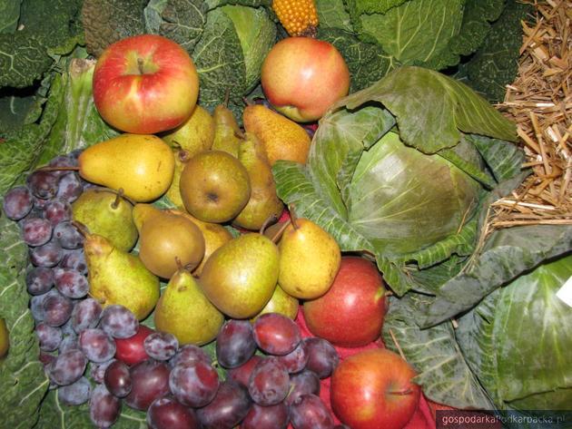 Komisja Europejska proponuje przedłużenie o rok wsparcia dla producentów owoców i warzyw
