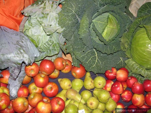 Dobra koniunktura dla producentów warzyw i trzody chlewnej, gorsza dla producentów zbóż